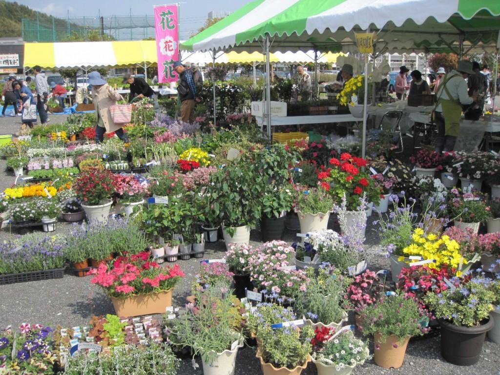 平成29年度 春の園芸市が開催されますの画像