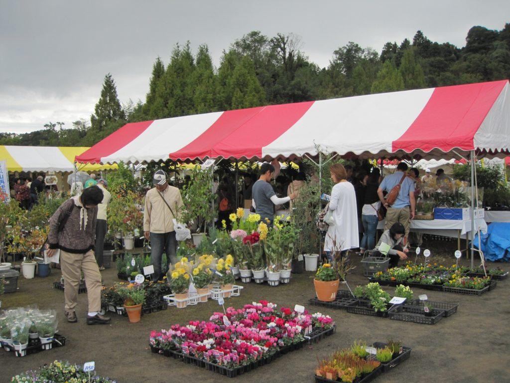 花と緑に囲まれる「春の園芸市」が開催されます。の画像