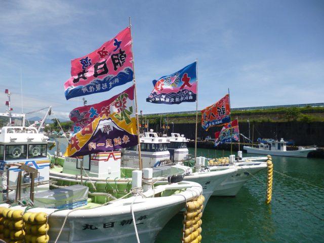 しずまえ鮮魚「桜えび」を堪能!!「由比桜えびまつり」が開催されます!