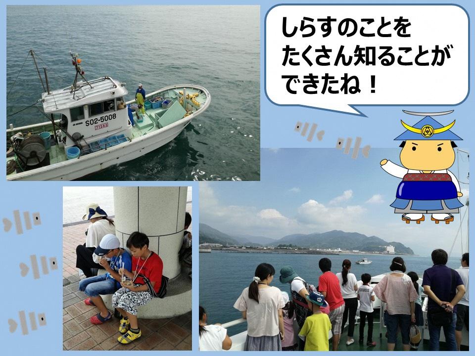 清水でしらす漁を見学!!
