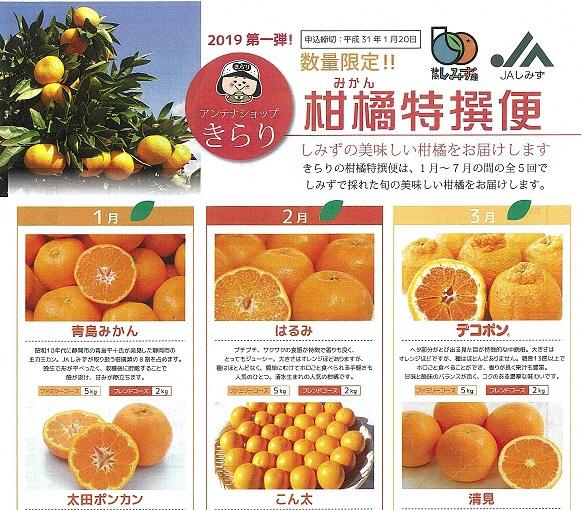 清水のおいしい柑橘が届く「柑橘特選便」