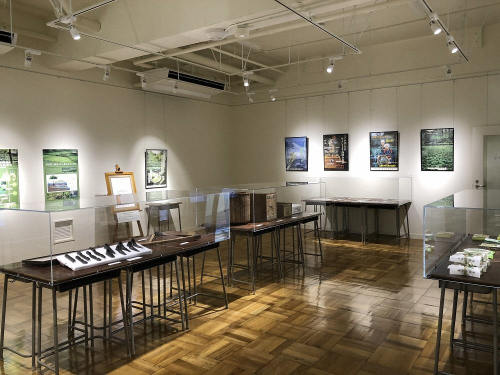 「ふじのくに地球環境史ミュージアム」わさび関連展示のお知らせの画像
