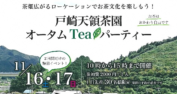 茶畑広がるロケーションでお茶文化を楽しもう!「戸崎天領茶園オータムTeaパーティー」の画像