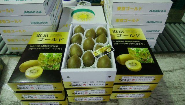 キウイフルーツ'東京ゴールド'の出荷が始まりました!