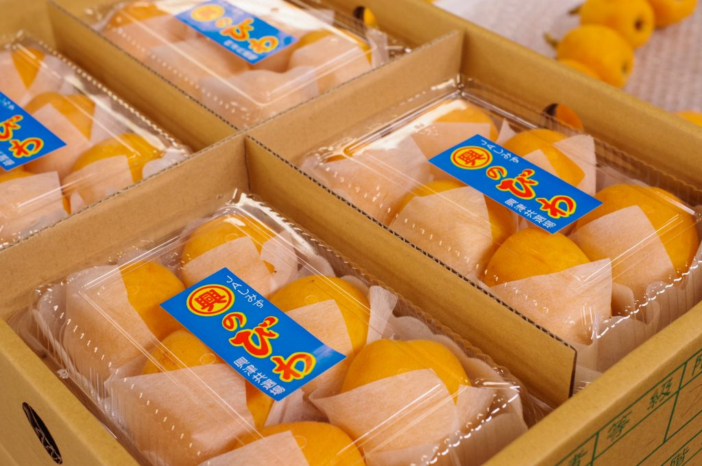 興津のビワ出荷が始まります!の画像