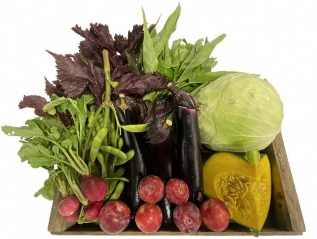 【毎月第3水曜開催】 「清水いはらキッチン」新鮮な地元農産物の直売やります!