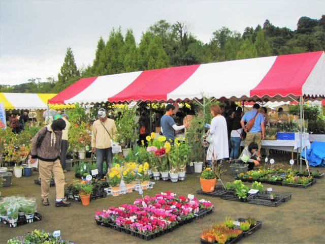 ~みんなで花と緑あふれるまちを作ろう!~ 『令和3年度 春の園芸市』開催!